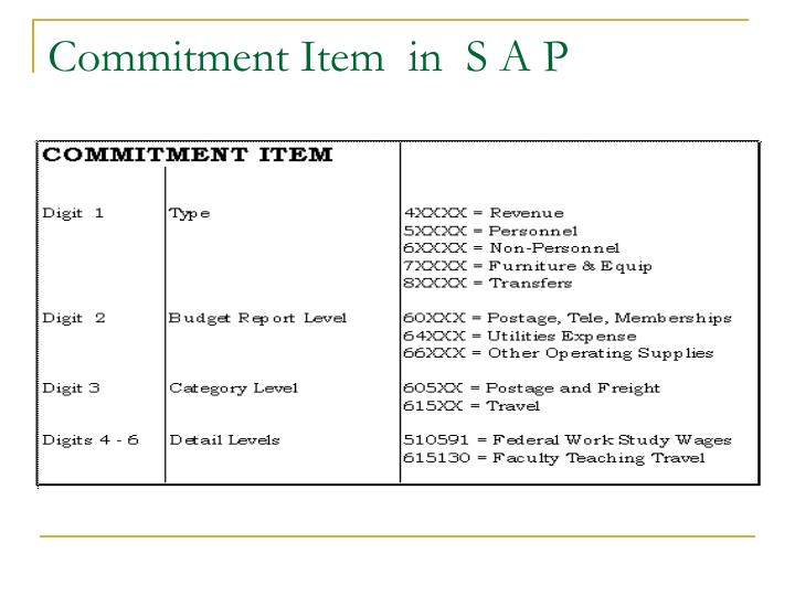 Commitment Item  in  S A P