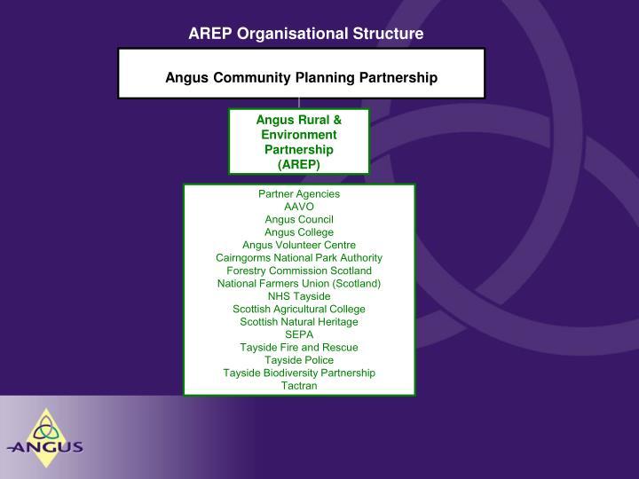 AREP Organisational Structure