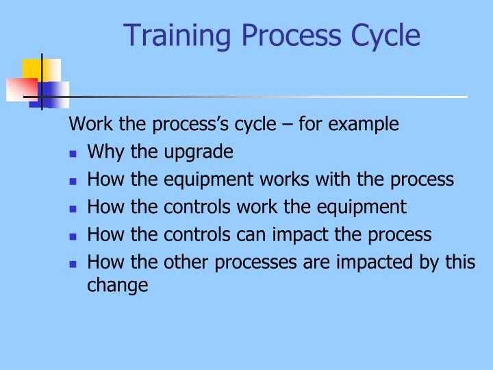 Training Process Cycle