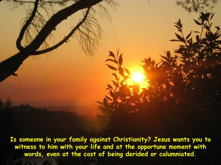 Is someone in your family against Christianity? Jesus wants you to witness to him with your life and at the opportune moment with words, even at the cost of being derided or calumniated.