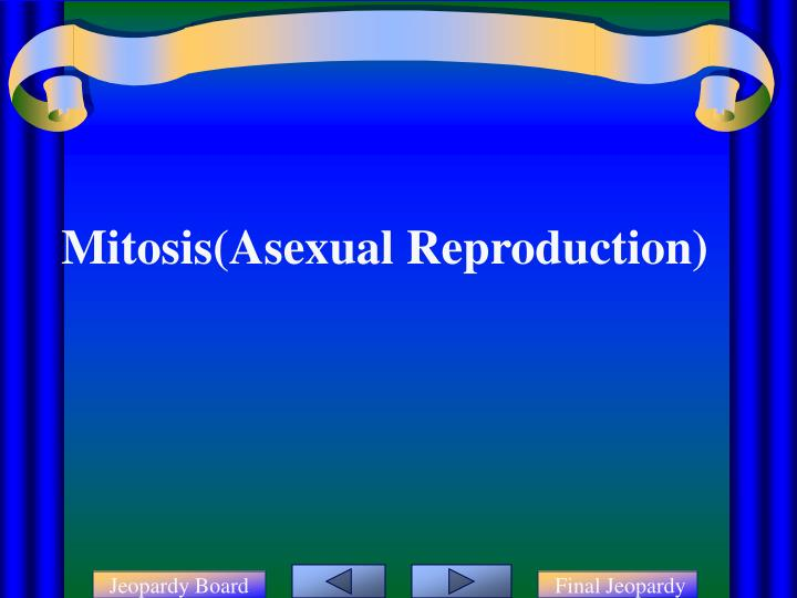 Mitosis(Asexual Reproduction)