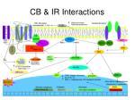 cb ir interactions