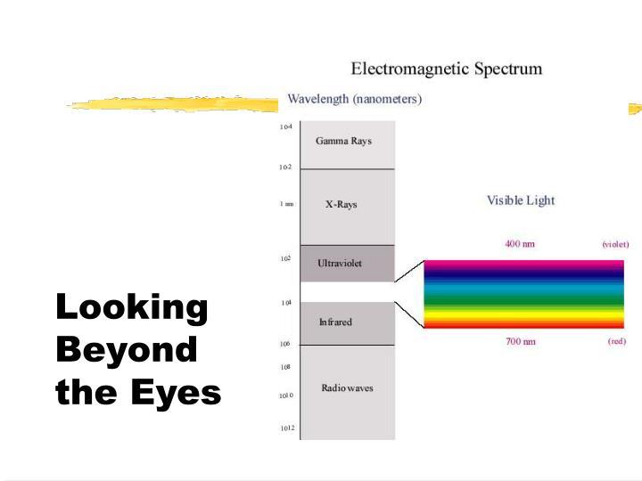 Looking Beyond the Eyes