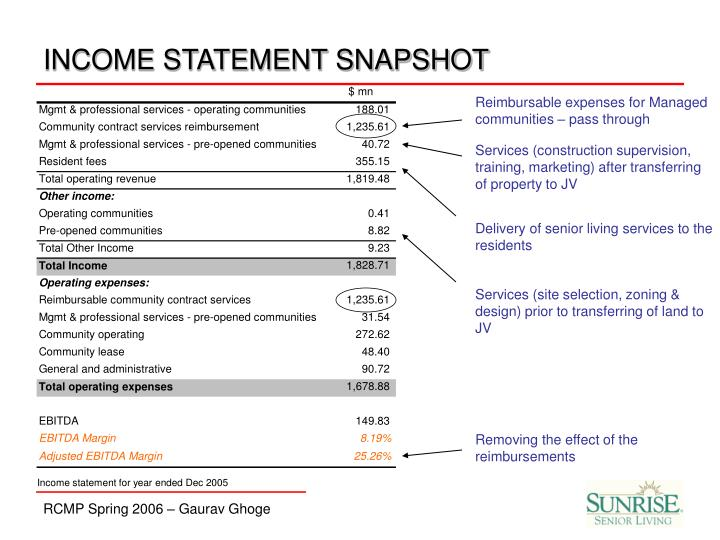 INCOME STATEMENT SNAPSHOT