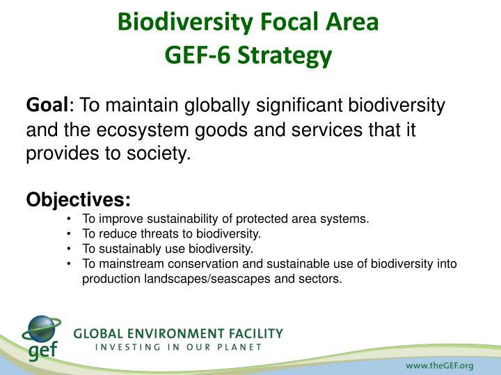 Biodiversity Focal Area
