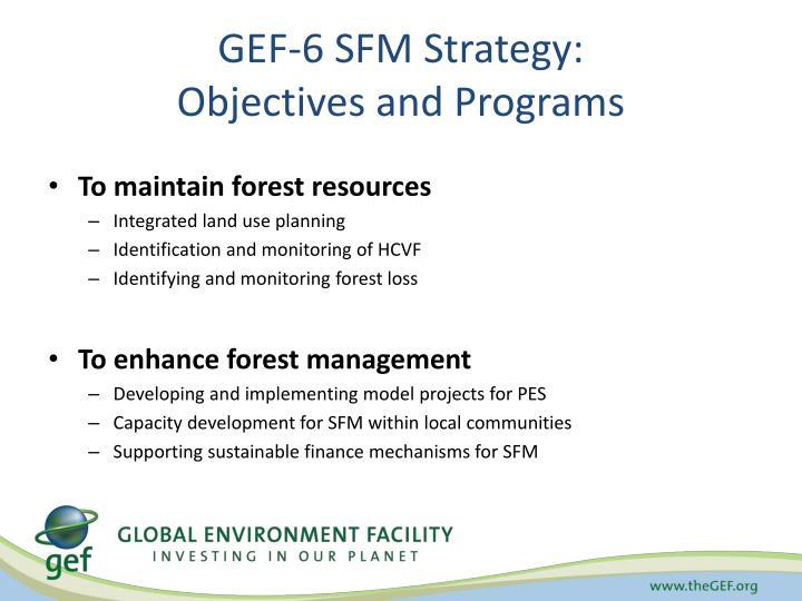 GEF-6 SFM Strategy: