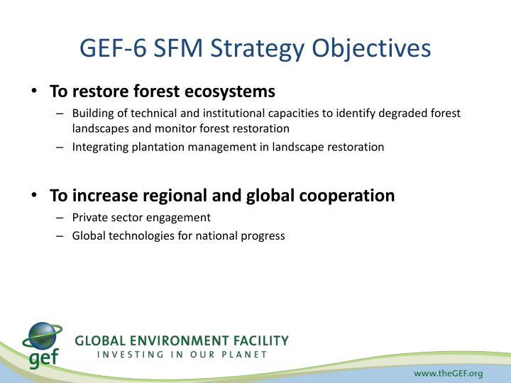 GEF-6 SFM Strategy Objectives