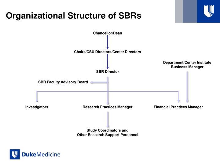Organizational Structure of SBRs