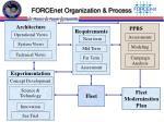 forcenet organization process