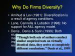 why do firms diversify