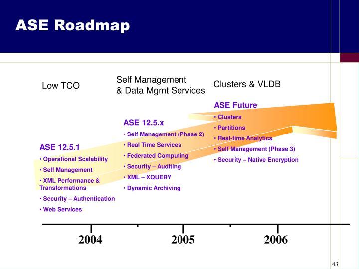 ASE Roadmap