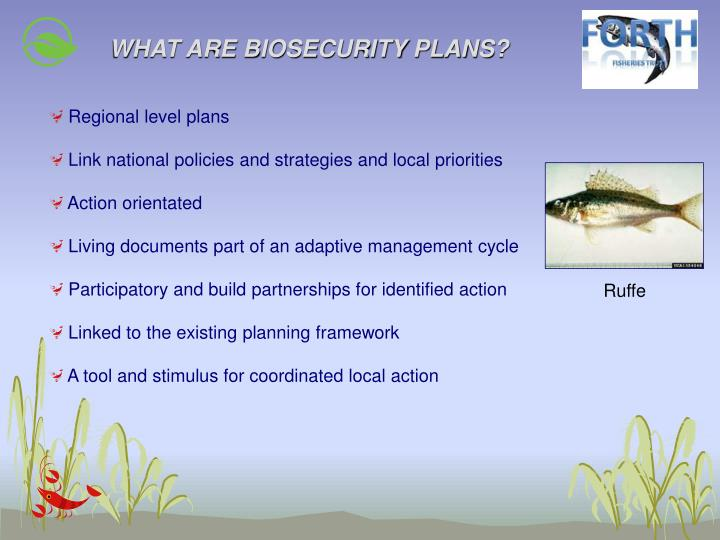 WHAT ARE BIOSECURITY PLANS?