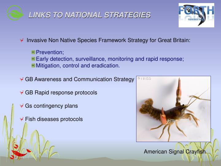 LINKS TO NATIONAL STRATEGIES