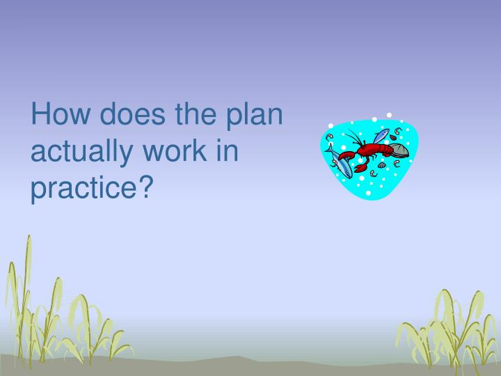 How does the plan actually work in practice?