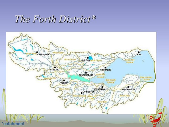 The Forth District*