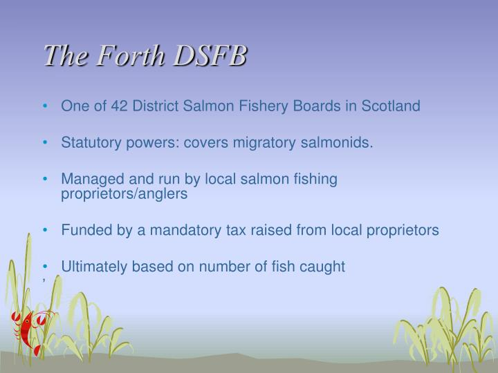 The Forth DSFB