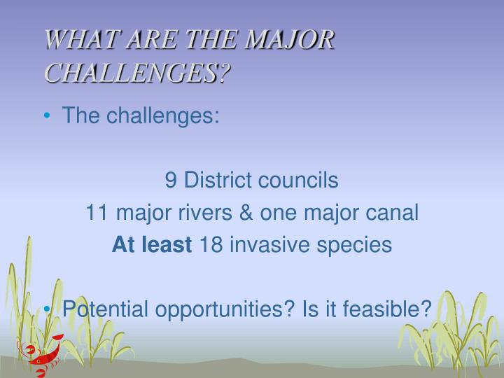 WHAT ARE THE MAJOR CHALLENGES?