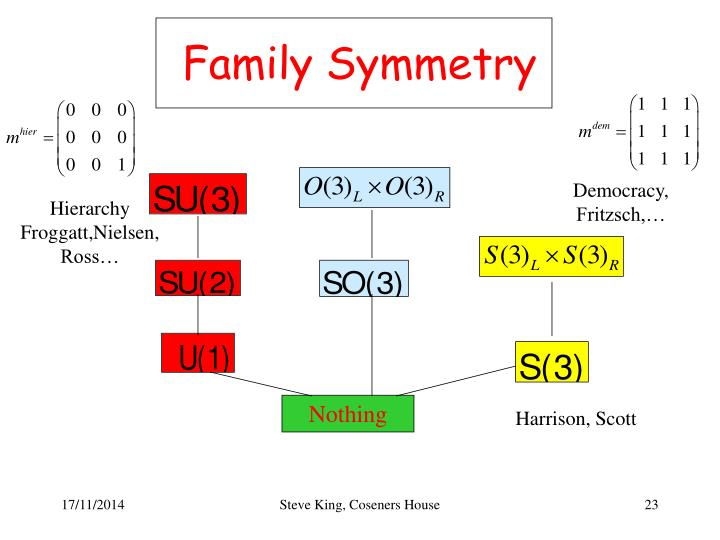 Family Symmetry