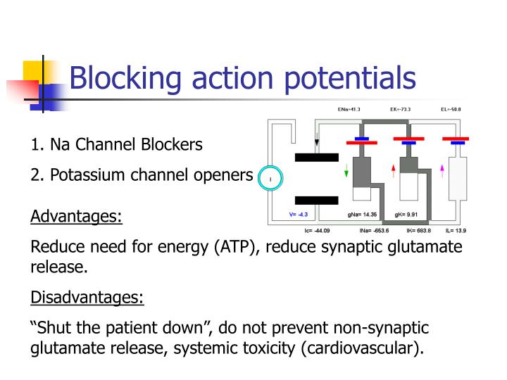 Blocking action potentials