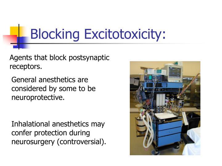 Blocking Excitotoxicity: