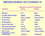 trends during succession i