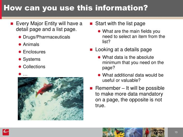 Every Major Entity will have a detail page and a list page.