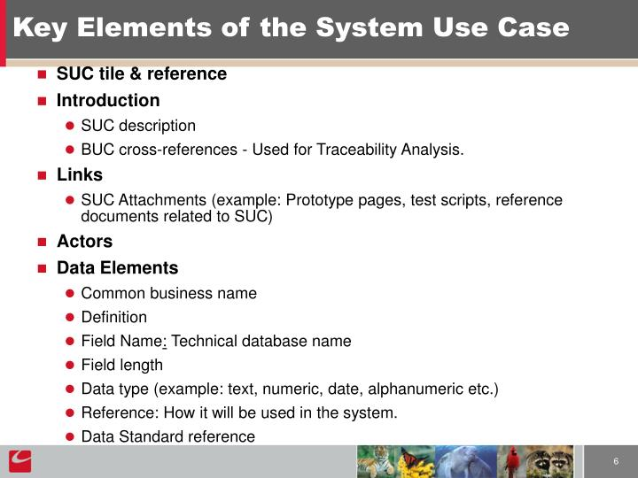 Key Elements of the System Use Case