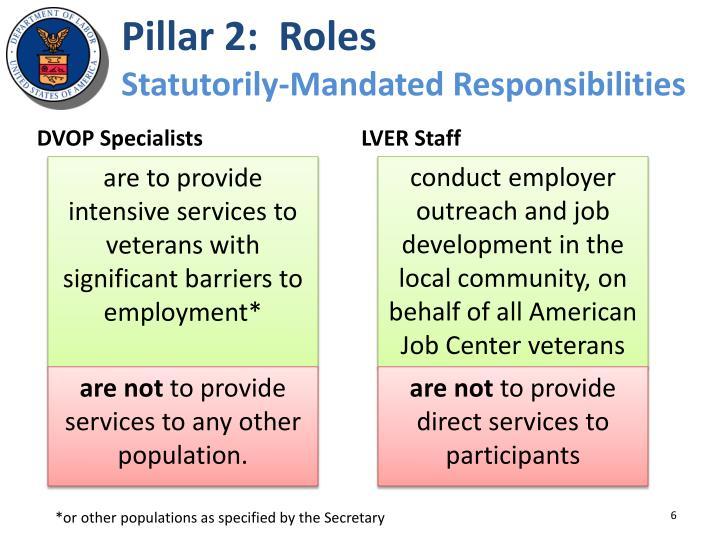 Pillar 2:  Roles
