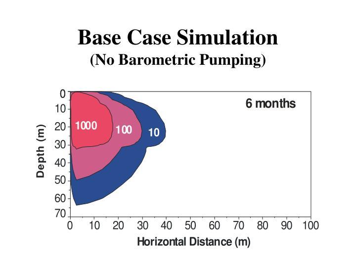 Base Case Simulation