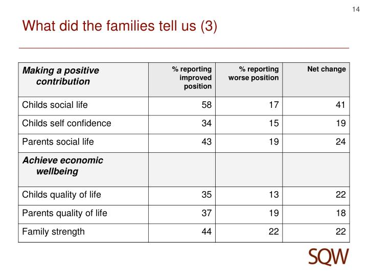 What did the families tell us (3)
