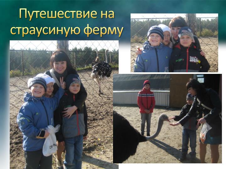 Путешествие на страусиную ферму