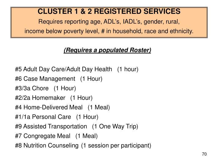 CLUSTER 1 & 2 REGISTERED SERVICES