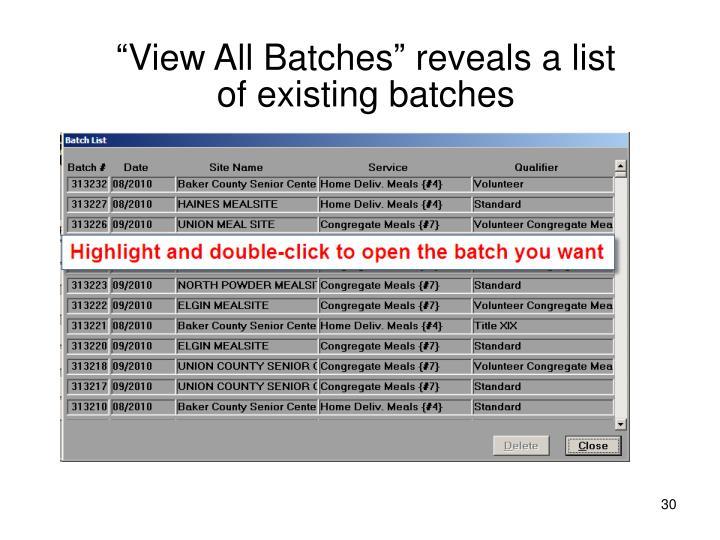 """View All Batches"" reveals a list"