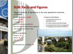 sua facts and figures