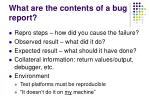 what are the contents of a bug report