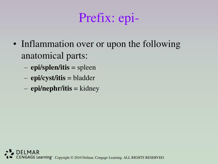 Prefix: epi-