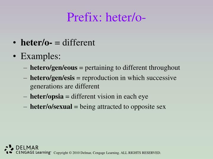 Prefix: heter/o-