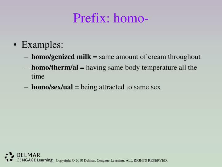 Prefix: homo-