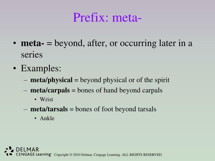 Prefix: meta-