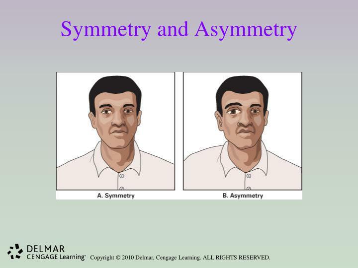 Symmetry and Asymmetry