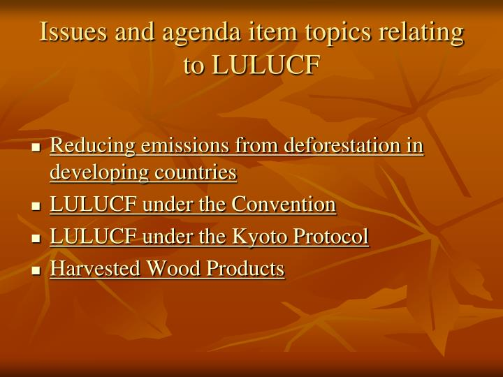 Issues and agenda item topics relating to LULUCF
