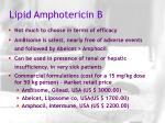 lipid amphotericin b