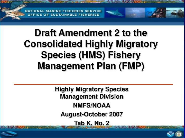 Draft Amendment 2 to the Consolidated Highly Migratory Species (HMS) Fishery Management Plan (FMP)