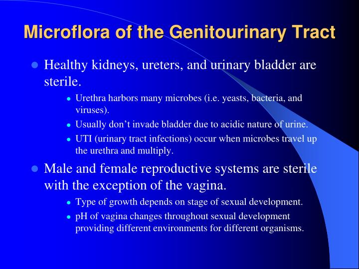 Microflora of the Genitourinary Tract