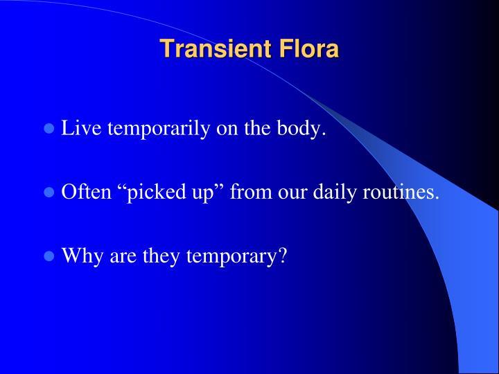 Transient Flora