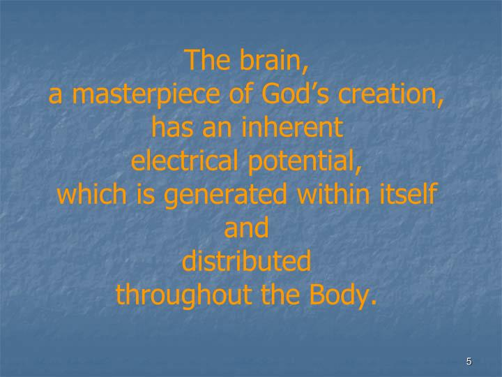 The brain,