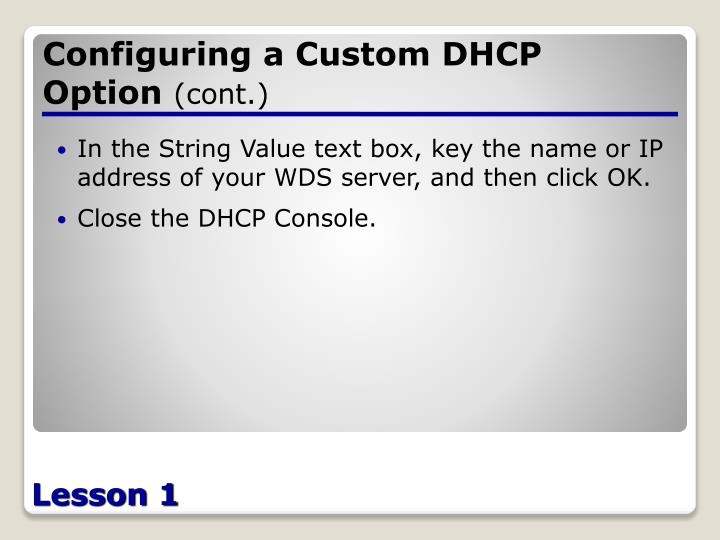 Configuring a Custom DHCP Option