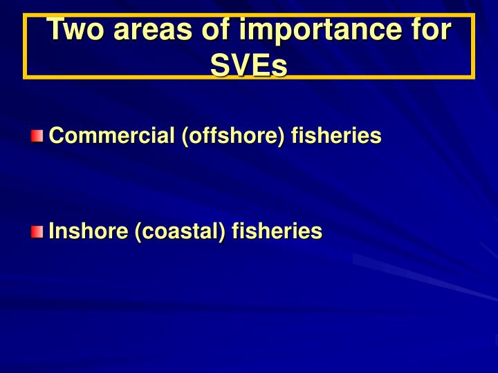 Two areas of importance for SVEs