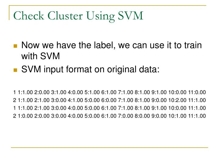 Check Cluster Using SVM