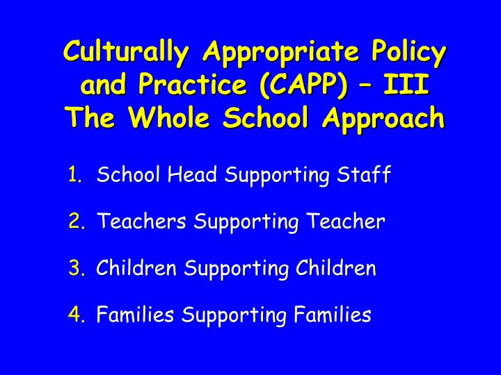 Culturally Appropriate Policy and Practice (CAPP) – III